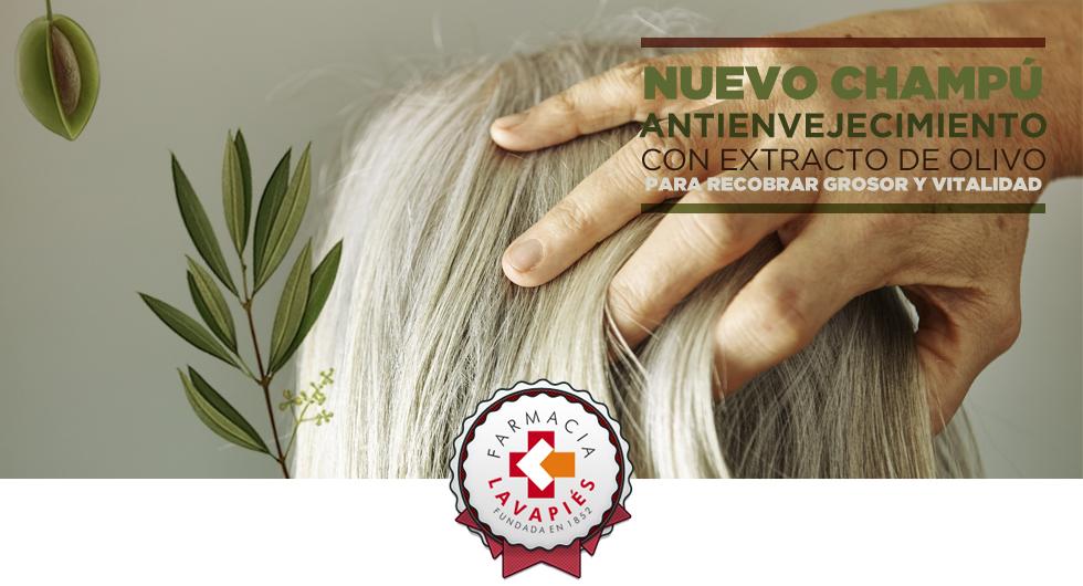 Champú para pelo envejecido de Klorane con Olivo en Farmacia Lavapiés