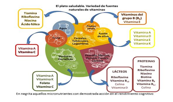 Fuentes naturales de vitaminas para rendir en examenes
