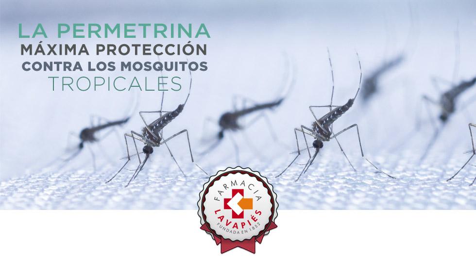 Permetrina recomendada como antimosquitos tropicales