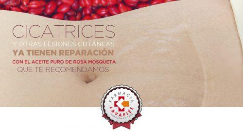 Reparar cicatrices y lesiones cutaneas con el aceite puro de rosa mosqueta de repavar en venta en farmacia lavapies