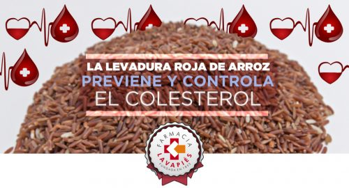Controla y previene los niveles altos de colesterol con Arkosterol recomendado por Farmacia Lavapiés