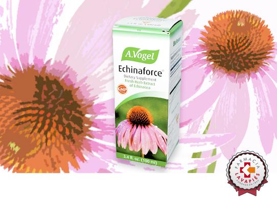Solución para combatir gripe y resfriados de manera natural con Echinaforce de laboratorios A. Vogel en Farmacia Lavapies